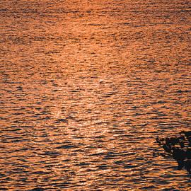 Oleg Ver - Golden sunset