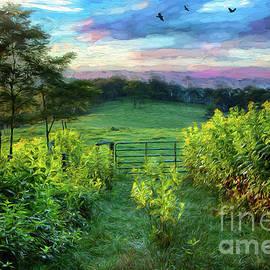 Goldenrod Sunrise in the Blue Ridge AP by Dan Carmichael