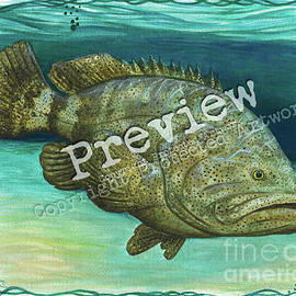 Goliath Grouper by Amber Marine