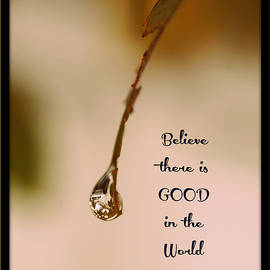 Good In The World by Trish Tritz