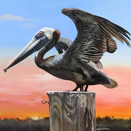 Phyllis Beiser - Good Morning Florida
