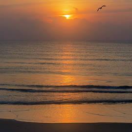 Good Morning Sea by Brian Wallace