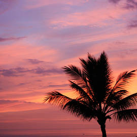 Gorgeous Hawaiian Sunset - 1 by Karen Nicholson
