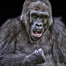 Jim Fitzpatrick - Gorilla Ready to Box