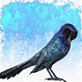 Barbara Chichester - Grackle