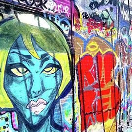 Patti Ferron - Graffiti Alley, Boston, MA