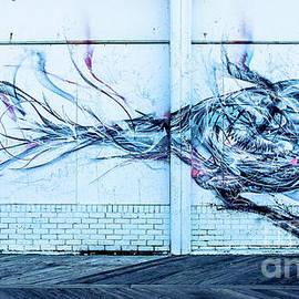 Colleen Kammerer - Graffiti Bird