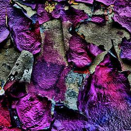 Wayne Higgs - Graffiti Composition #20170328-02