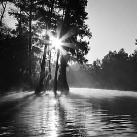 Scott Pellegrin - Grand Bayou Morning