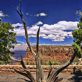 Allen Beatty - Grand Canyon # 11 - Moran Point