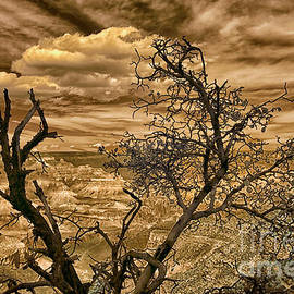 Grand Canyon Drama in Infrared by Norman Gabitzsch