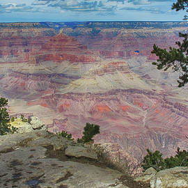 Ruth Jolly - Grand Canyon in Spring