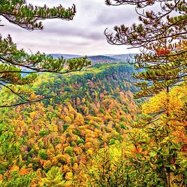 Steve Harrington - Grand Canyon of Pennsylvania - Paint