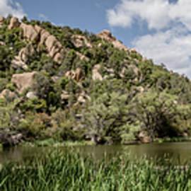 Granite Basin 4 by Teresa Wilson