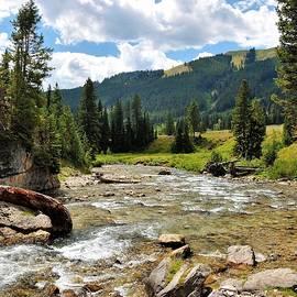 Heidi Fickinger - Granite Creek Wyoming