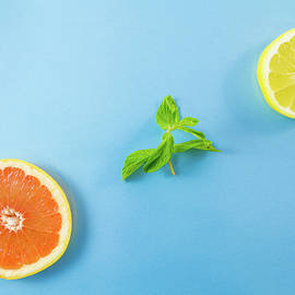 Iordanis Pallikaras - Grapefruit Lemon slices and Mint Leaves Minimalism