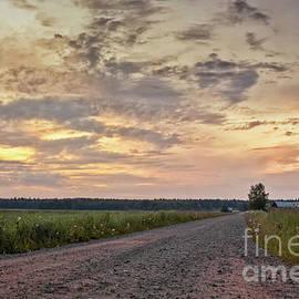 Jukka Heinovirta - Gravel Road In The Summer Sunset