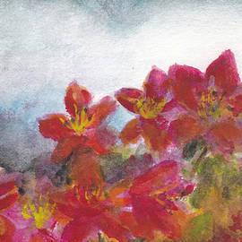 Lin-Lin Mao - Gray Sky at McCrillis Gardens