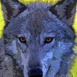 Steve Gass - Gray Wolf Portrait