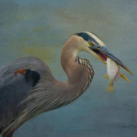 Sandi OReilly - Great Blue Heron And Catch