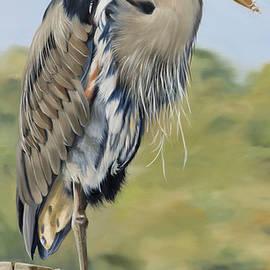 Phyllis Beiser - Great Blue Heron Standing