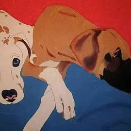 Great Dane Modern Pet Portrait by Cindi Roberts