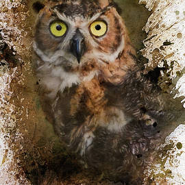 Great Horned Owl In The Cemetery by Jai Johnson