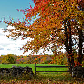 Mike Martin - Great Meadowbrook Farm Foliage