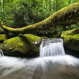 Mark VanDyke - Great Smoky Mountains National Park Roaring Fork