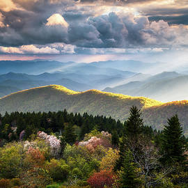 Great Smoky Mountains National Park - The Ridge by Dave Allen