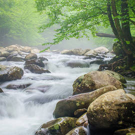Robert Stephens - Great Smoky Mountains TN Peaceful Easy Flow