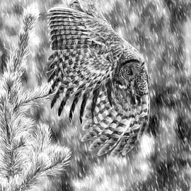 Great Grey Owl in Snowstorm  by Wes and Dotty Weber