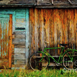 Amy Cicconi - Green bicycle and old shed