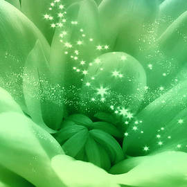 Johanna Hurmerinta - Green Crysanthemum With Stars