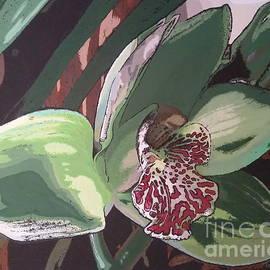 Troy Warrell - Green Cymbidium Orchid