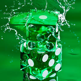 Steve Gadomski - Green Dice Splash