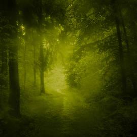 Dorit Fuhg - Green Forest