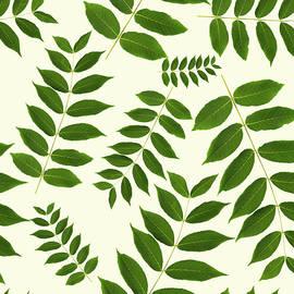 Christina Rollo - Botanical Pattern