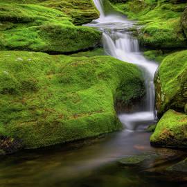 Green Moss Falls by Bill Wakeley