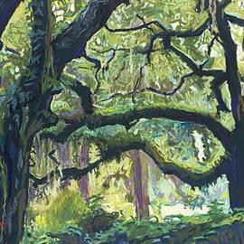 Green Oaks by David Randall