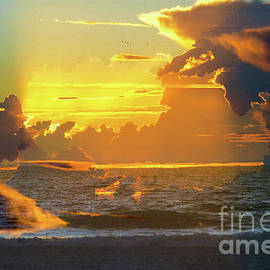 Thomas Carroll - Green Ray Sunset