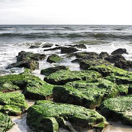 Thomas  MacPherson Jr - Green Rocks