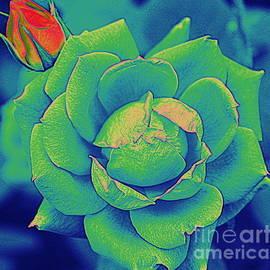Green Rose Pop Art by Dora Sofia Caputo