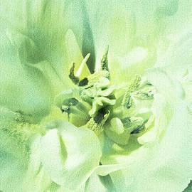 Lali Kacharava - Green Tulip