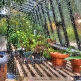 Mike Savad - Greenhouse - In a Greenhouse Window
