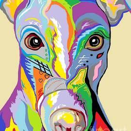 Eloise Schneider - Greyhound Close Up