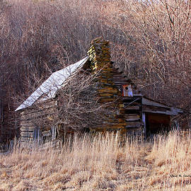 Grimes Cabin by Dale R Carlson