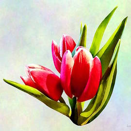 Susan Savad - Group of Red Tulips