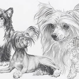 The Chinese Crested and Powderpuff by Barbara Keith