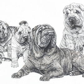 Mister Wrinkles and Family by Barbara Keith